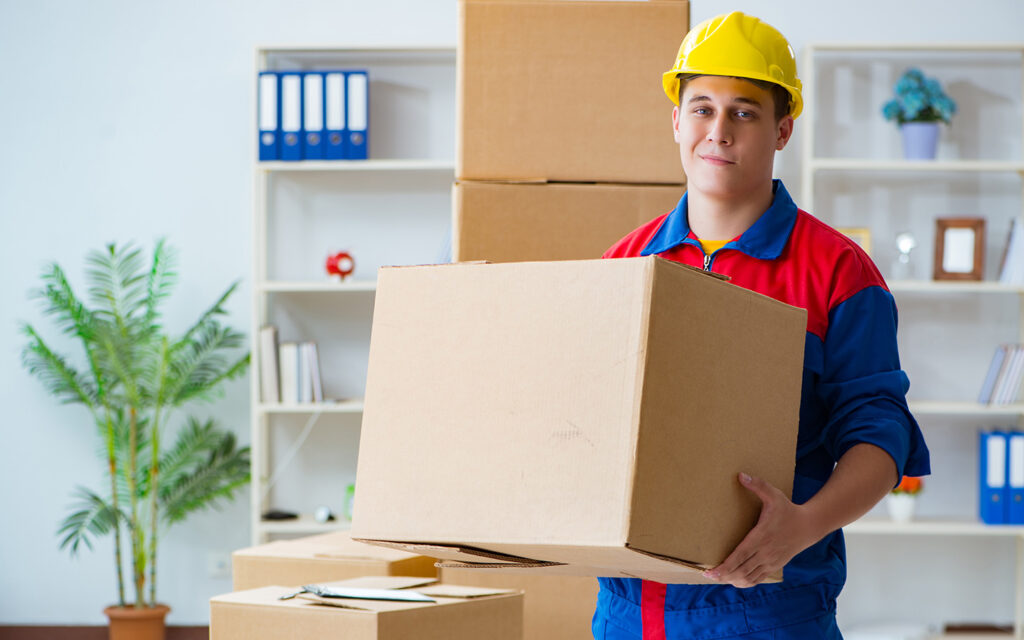 Professional-mover-service